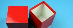 Kryoboxen 142x142x100 mm hoch