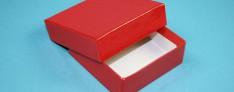 Kryoboxen 142x142x25 mm hoch