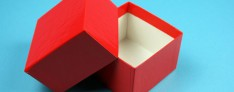 Kryoboxen 142x142x50 mm hoch