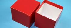 Kryoboxen 142x142x75 mm hoch